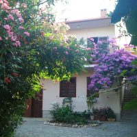 Ffirst class apartment in villa, private pool, big garden, close to sea and old Zadar town