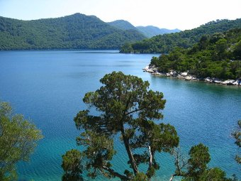 Day Trips from Dubrovnik - Mljet