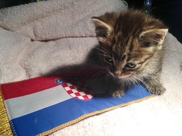 About Visit Croatia