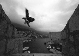 Images of Dubrovnik - Dubrovnik harbour