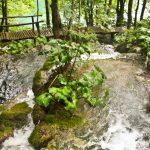 Plitvice Lakes Photos - River