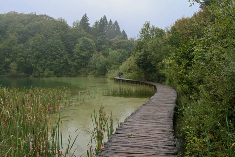 Plitvice Lakes Photos - Path