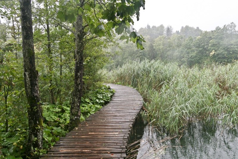 Plitvice Lakes Photos - Path