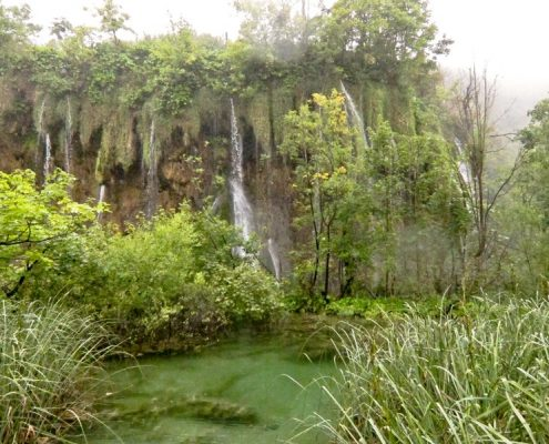 Plitvice Lakes Photos - Greenery