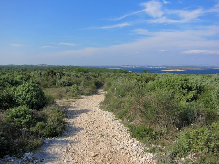 Cape Kamenjak view