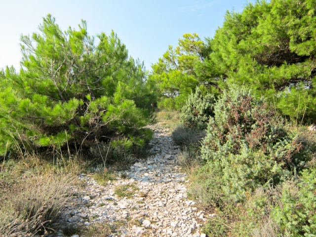 Cape Kamenjak path
