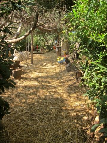 Cape Kamenjak Safari Bar