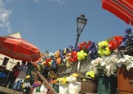 Images of Croatia 2 - Zagreb flower market