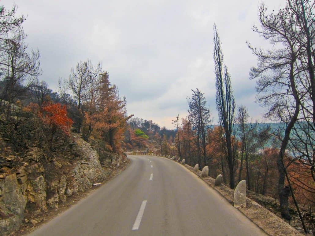 Photos of Vis - burnt trees
