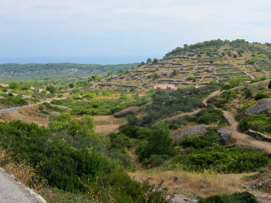 Photos of Vis - countryside