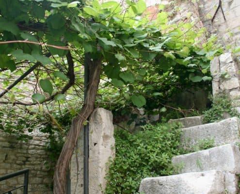 Photos of Split - Steps