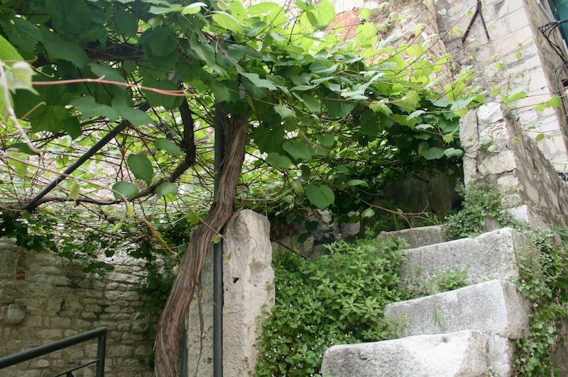 Photos of Split - Steps