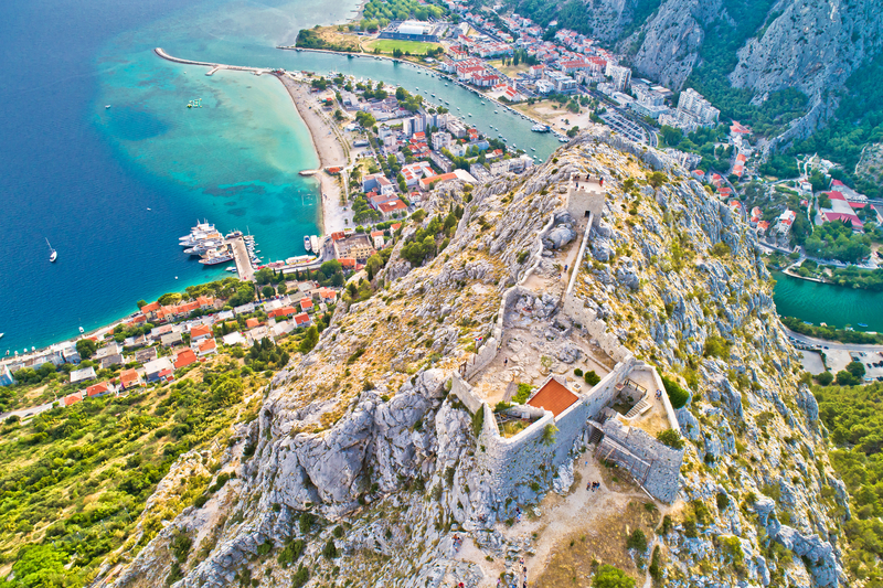 Fortica Omis