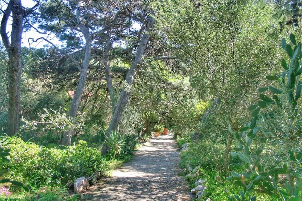 Sveti Klement path